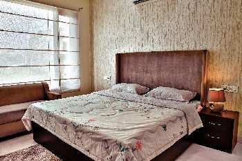 House for sale in sector 9 panchkula Haryana
