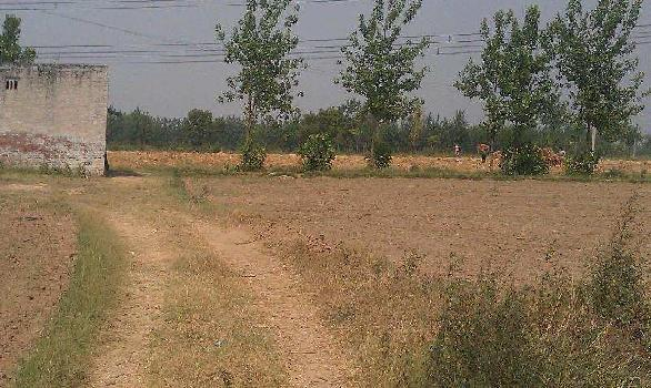 Residential land near ram janaki colony madhubani for sale