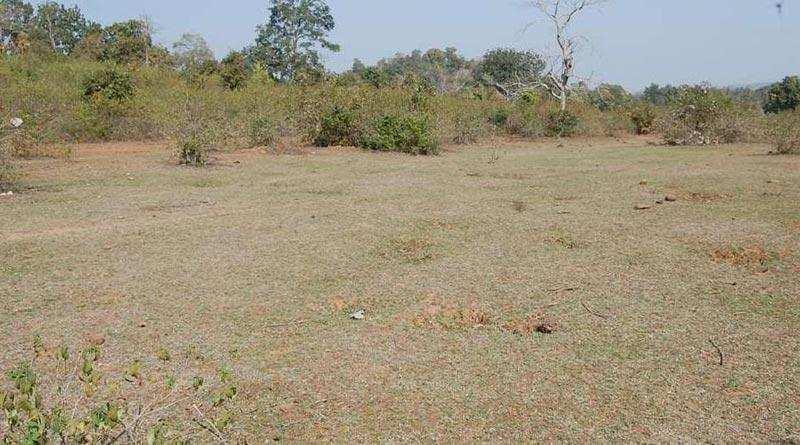 1 katha land for sale in Benipatti Madhubani