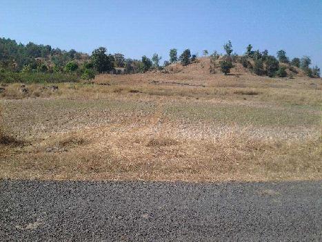 1 katha residential land near sapta madhubani