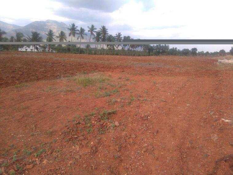 1900 Sq. Feet Residential Land / Plot for Sale in Benipatti