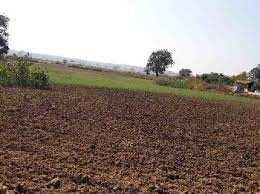 Residential Plot For Sale In Jibachh Chowk, Madhubani, Bihar.