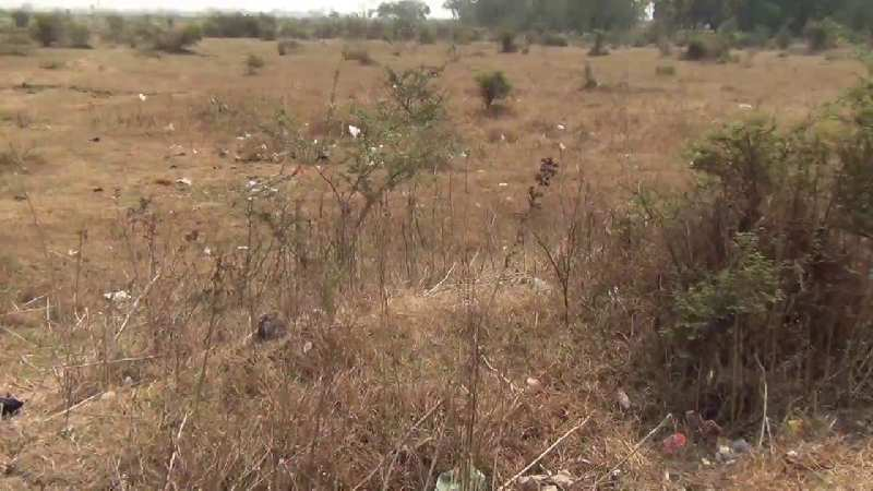 Residential Plot For Sale In Very Prime Location At Bhoop Narayan Singh Colony , Madhubani, Bihar.