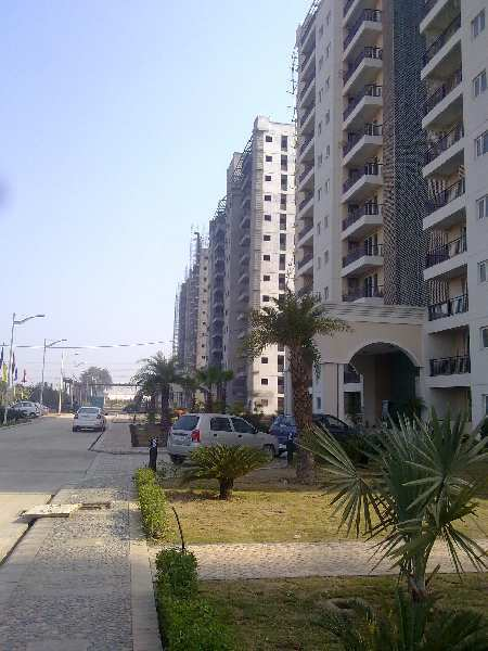 3 BHK Flats & Apartments for Sale in Pakhowal Road, Ludhiana