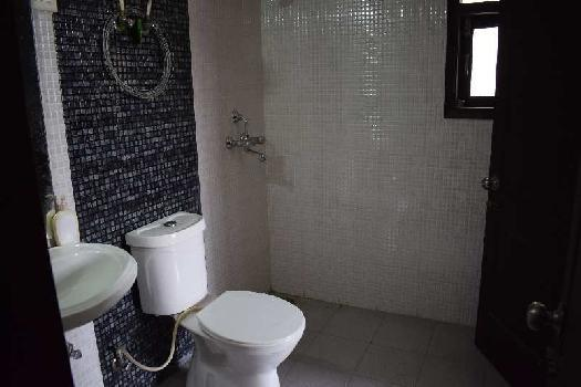 3BHK royal view premier available for rent at reasonable price