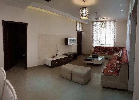 3BHK Grand Duke flat with super lifestyle
