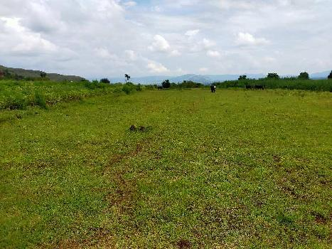 Agriculture plot for sale in Wai