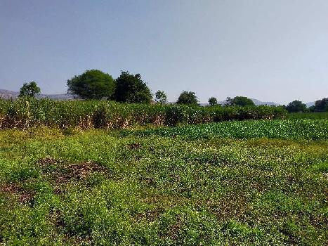 Agriculture land for sale in Wai