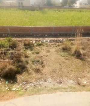 710 Sq.ft. Residential Plot for Sale in Sector 28, Rohtak