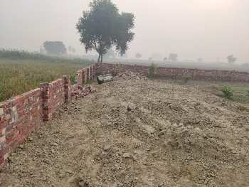 Agricultural/Farm Land for Sale in Ganjbar, Panipat
