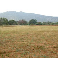 20000 sq.ft. Residential Plot for Sale@Chhattarpur