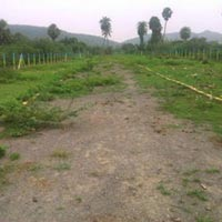 2500 sq.ft. Residential Plot for Rent@Chattarpur