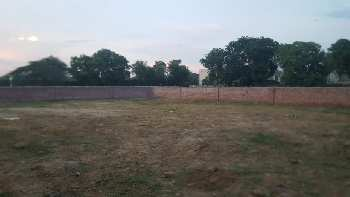 Residential Plot For Sale In Dera Mandi, Delhi