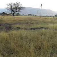 Industrial Land / Plot for Sale in Wada, Thane