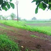 Farm Land for Sale At Mahad