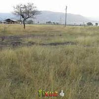 Farm Land for Sale at Ratnagiri