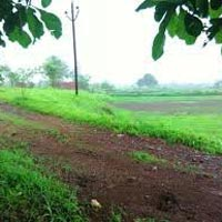 Agricultural/Farm Land for Sale in Dapoli, Ratnagiri