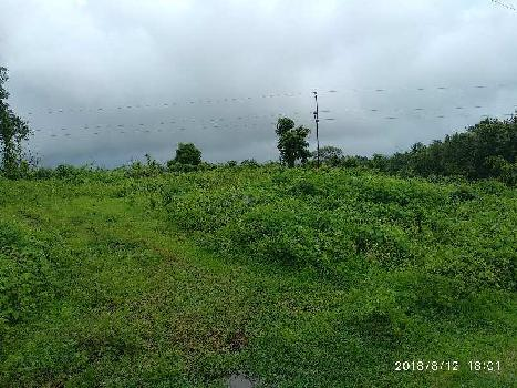 4 Acre Agricultural/Farm Land For Sale In Wada, Palghar