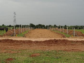 Residential Plot for Sale in Timmapur, Hyderabad