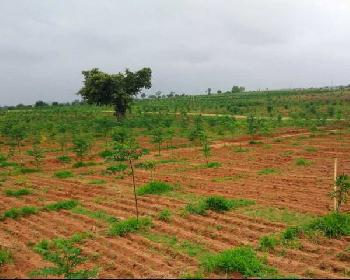 Residential Plot for Sale in Mahabubnagar, Hyderabad