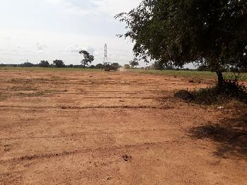 25 ACRES LAND FOR SALE IN SHADNAGAR