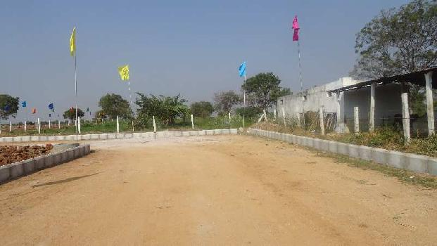 DTCPNorms Villa Plots with Bank Loans Surrounded by Lush Green Nature