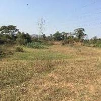 20 Acre Commercial Lands & Plots for Sale in Aluva