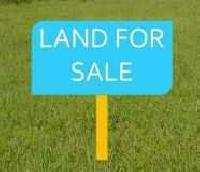 EAST FACING PLOT IN GATED TOWNSHIP IN ZIRAKPUR