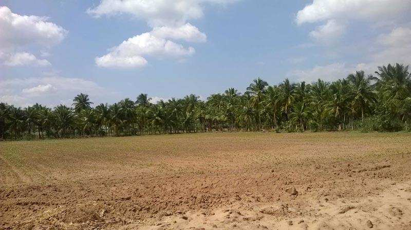 Residential Plot for Sale in Sainik Colony