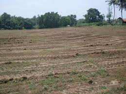 Residential Plot For Sale In Sector 49, Faridabad
