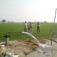 Agricultural land in Gwalior