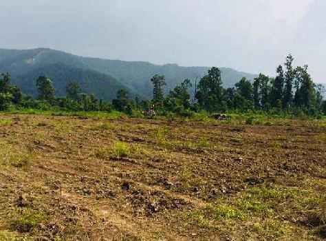 100bigha agriculture land in Shankerpur Road, dehradun