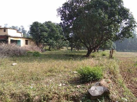 3bigha land for farm house near city Dehradun