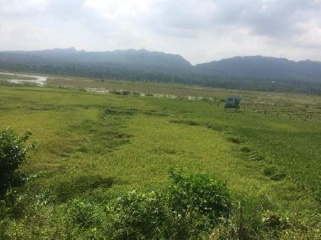 3.34 BIGHA FARM LAND
