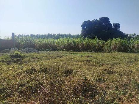 200gaz plot for sale in kanchiwala, Shankerpur