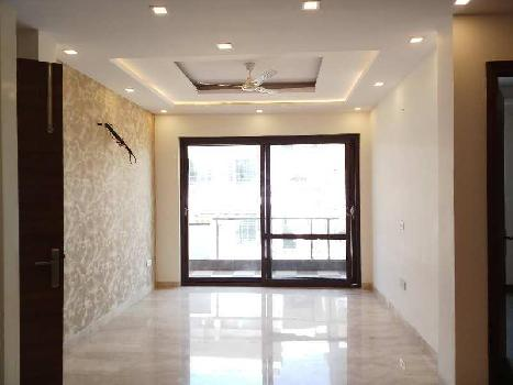 1BHK 1Bath Independent/Builder Floor for Rent in Sector 17B Gurgaon