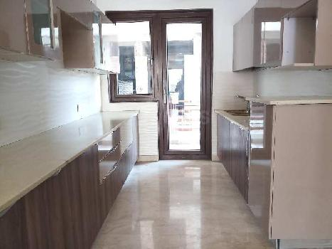 3BHK 3Baths Independent/Builder Floor for Sale in Sector-43 Gurgaon