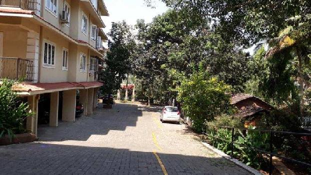 1 BHK Flats & Apartments for Sale in Socorro(Serula)