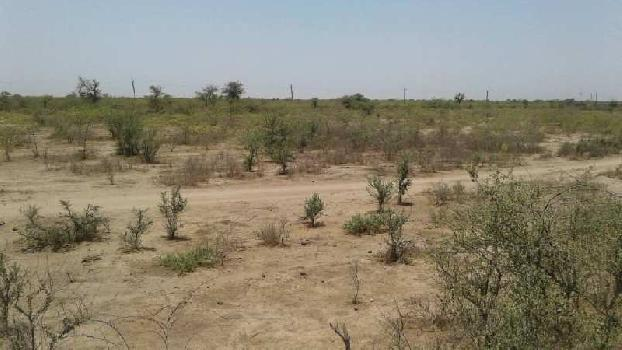 700 acres Industrial NA Land available in Vadala Mundra