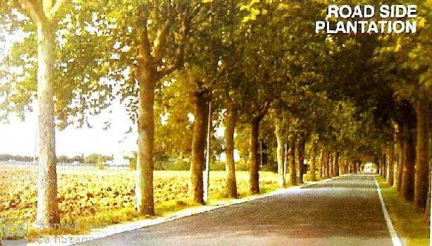 Plots for sale at Hingna road, Indore
