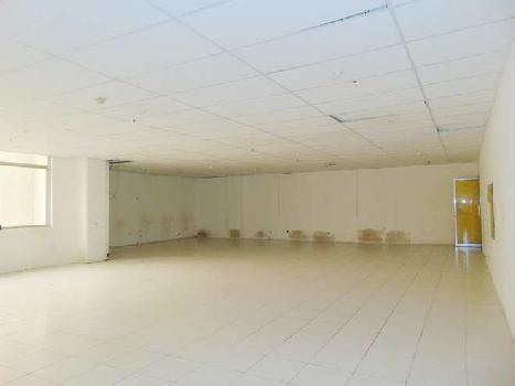 Commercial Showroom For Rent In M G Road, Sultanpur, Delhi.