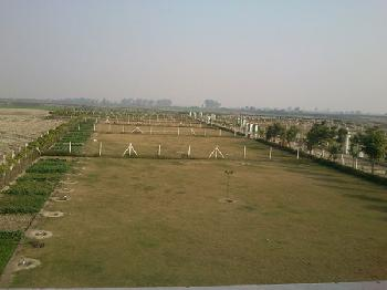 100 Sq Yard Residential Plot for Sale