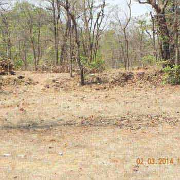 Clear Title Agriculture Land for Sale in Chiplun