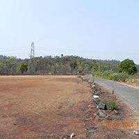 Sale Agriculture Clear Title Land in Chiplun
