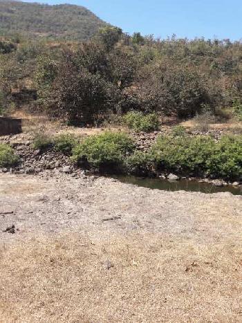 Available 9acres clear title Farmland near Chiplun