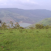 84 Guntha Plot for Sell in Panchgani,Mahableshwer