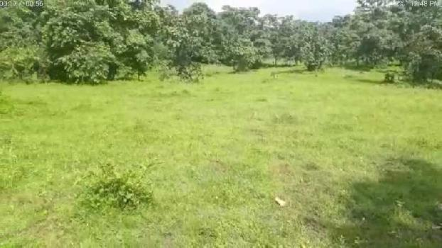plot for sell near pali