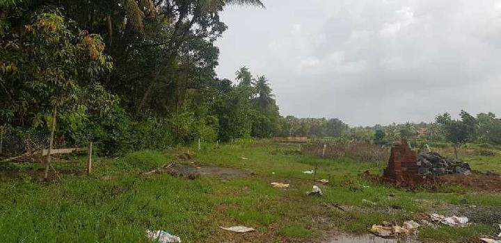 3 guntha property sell in nagaw beach
