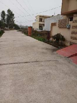 Residential Plot for Sale in Amrit Vihar, Jalandhar
