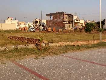 7.18 Marla Residential Plot For Sale In Amrit Vihar Jalandhar